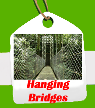 Hanging-Bridges.fw
