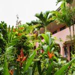 osta Rica Hostel & Backpackers