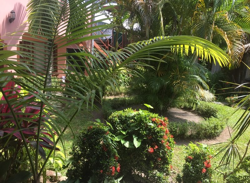 hostels & Backpackers Costa Rica